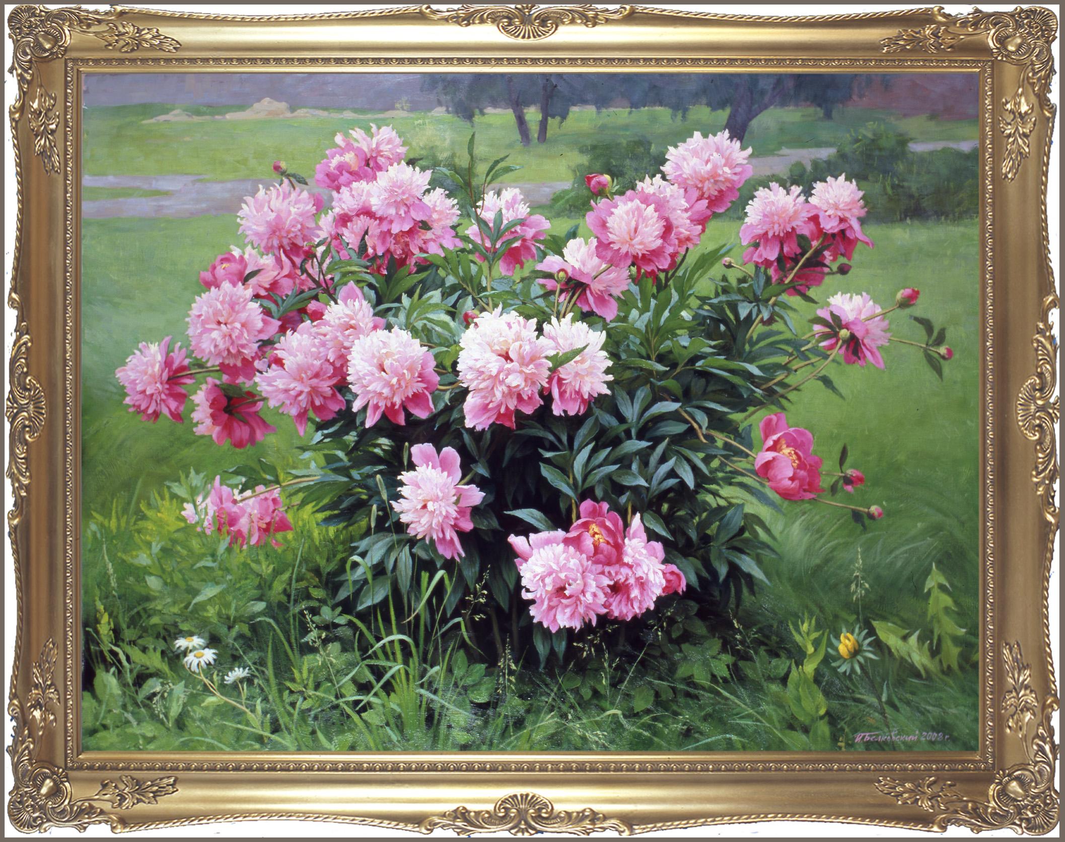 Gallery.ru / Игорь Белковский.  Куст пионов.  2008г - ПИОНы.  Живопись.